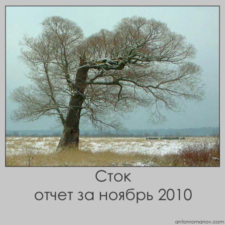 Сток-отчет за ноябрь 2010