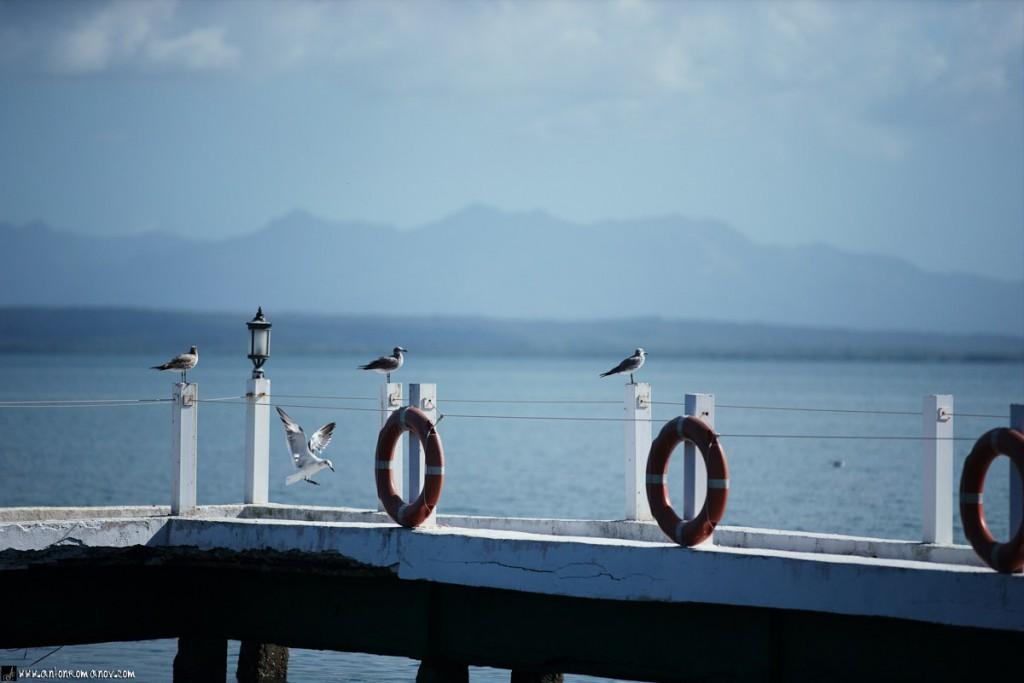 La bahía de Cienfuegos