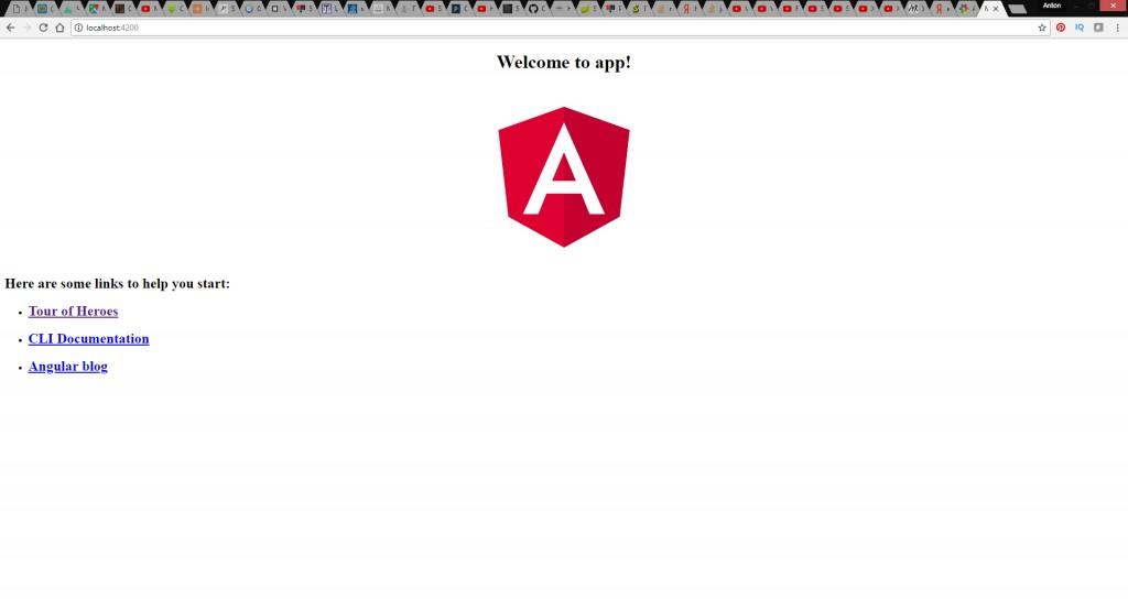 Angular Final Page